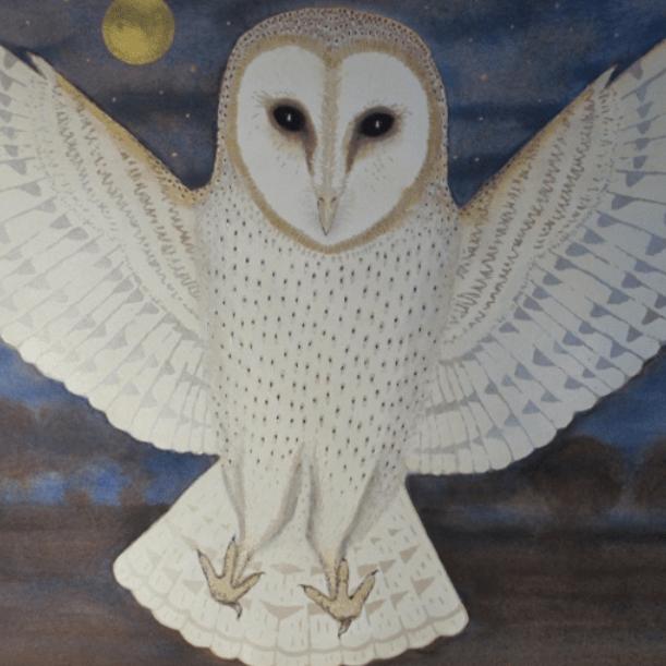 Fly-By-Night' Screen print/watercolour - Sue Farrow Jones